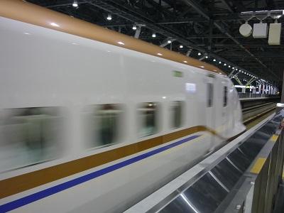 P1130003.JPG